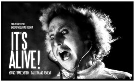 A.YOUNG FRANKENSTEIN 100