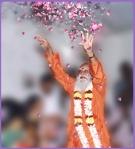 sri gurudev flower petals